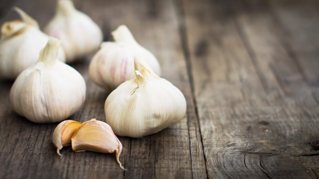 How to use garlic cloves and garlic olive oil for ear infections and to help manage ear pain. Treat ear infections naturally with garlic olive oil.