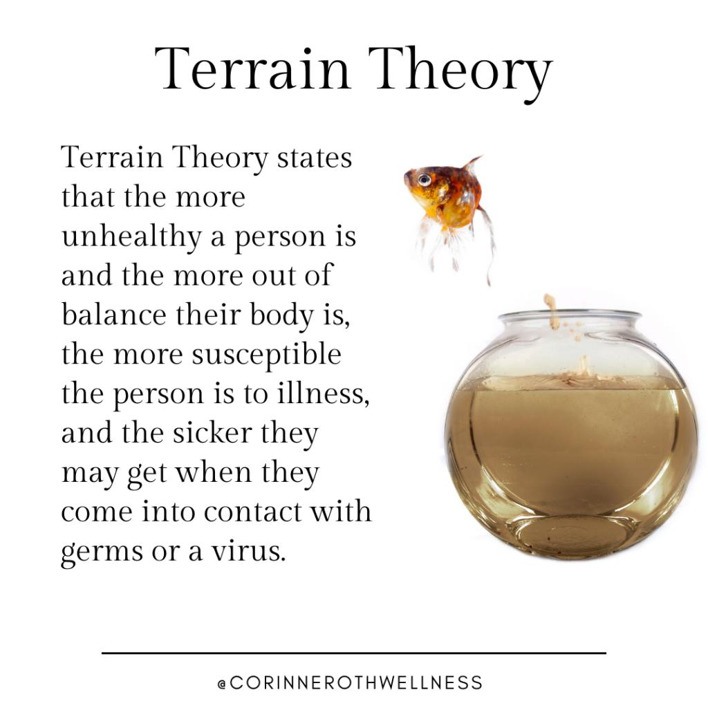 the terrain theory